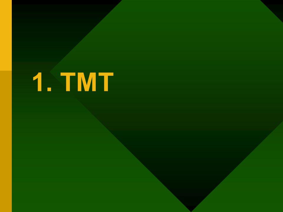 1. TMT