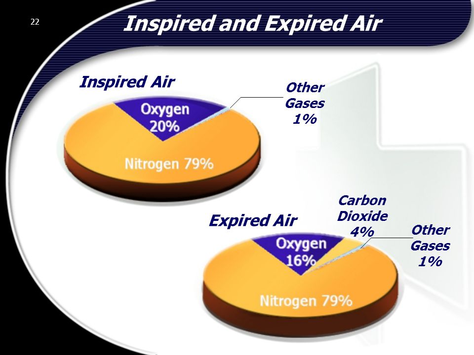 22 Inspired and Expired Air 22 Other Gases 1% Inspired Air Carbon Dioxide 4% Other Gases 1% Expired Air © 2002 Abertay Nationwide Training