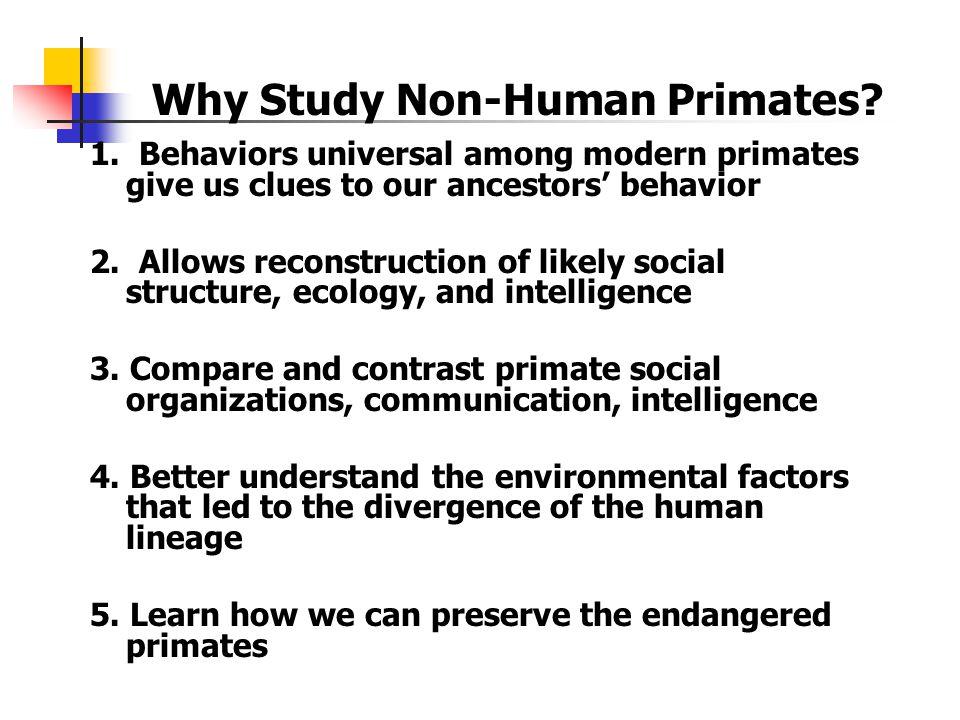 1.Behaviors universal among modern primates give us clues to our ancestors' behavior 2.