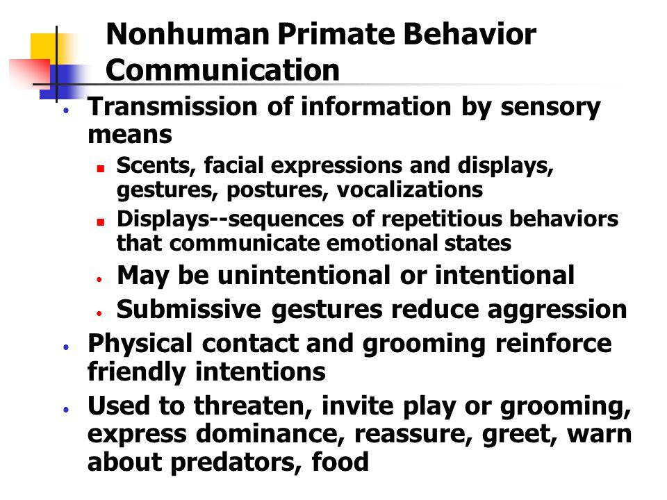 Primate Behavior Key Terms