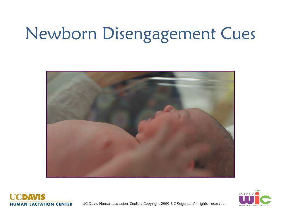 UC Davis Human Lactation Center. Copyright 2009 UC Regents. All rights reserved. Newborn Disengagement Cues