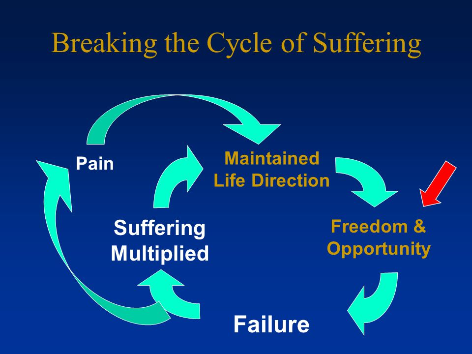 Breaking the Cycle of Suffering Failure Lost Freedom & Opportunity Suffering Multiplied Pain Self- Compassion And Life Direction