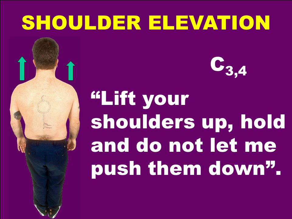SHOULDER ELEVATION C 3,4 Lift your shoulders up, hold and do not let me push them down .