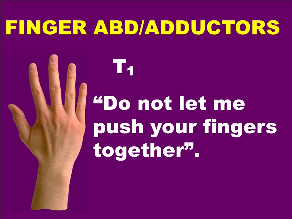 FINGER ABD/ADDUCTORS T1T1 Do not let me push your fingers together .