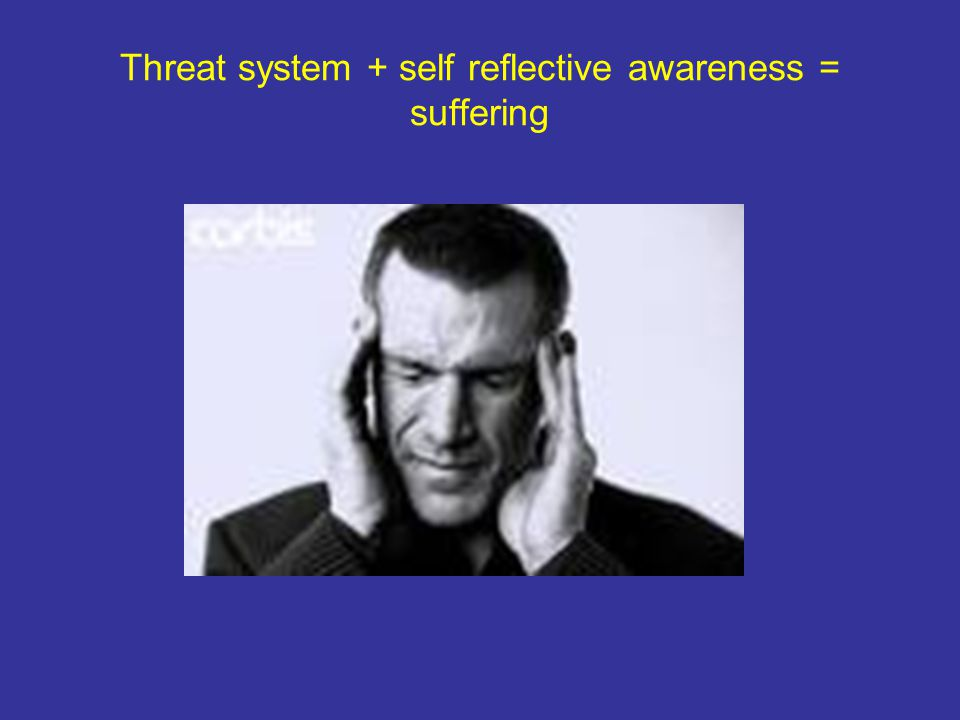Threat system + self reflective awareness = suffering