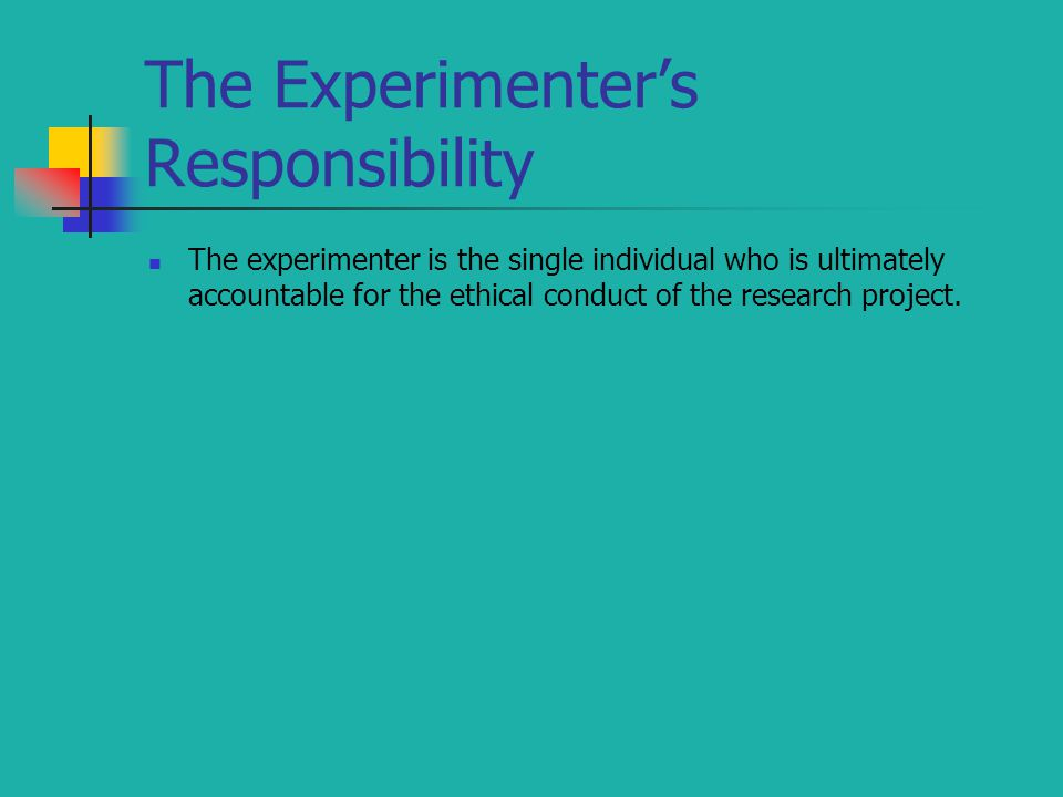 The experimenter is the single individual who is ultimately accountable for the ethical conduct of the research project.