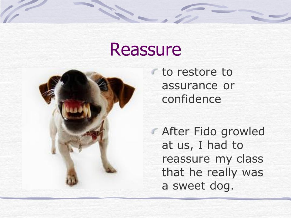 Reassure to restore to assurance or confidence After Fido growled at us, I had to reassure my class that he really was a sweet dog.