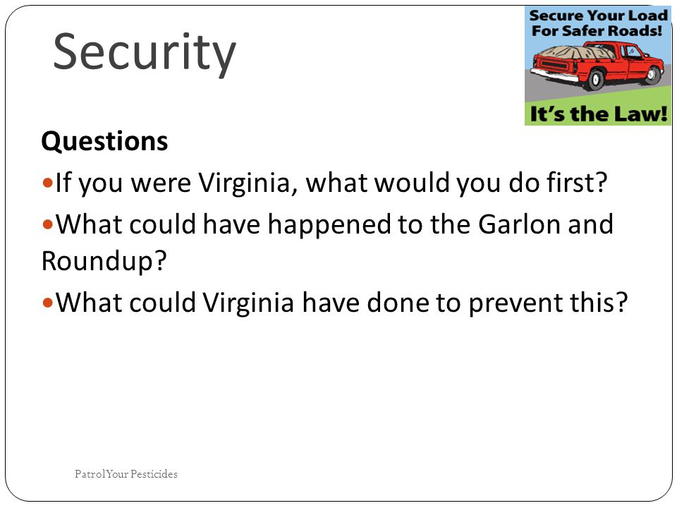 Security Questions If you were Virginia, what would you do first.