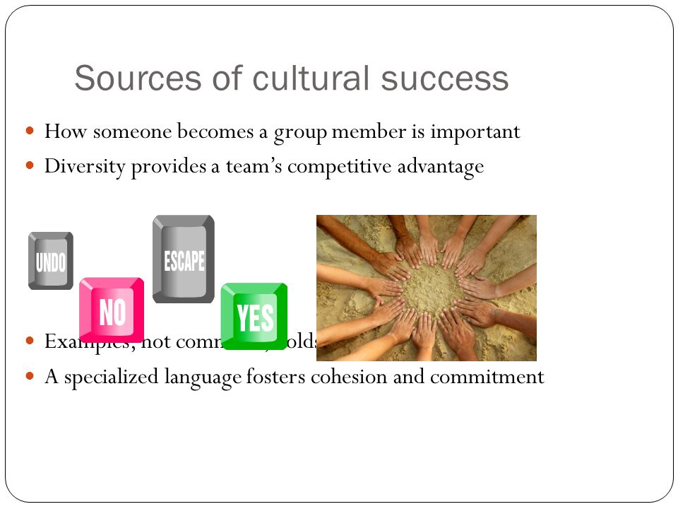 Sources of cultural success How someone becomes a group member is important Diversity provides a team's competitive advantage Examples, not command, holds a team together A specialized language fosters cohesion and commitment