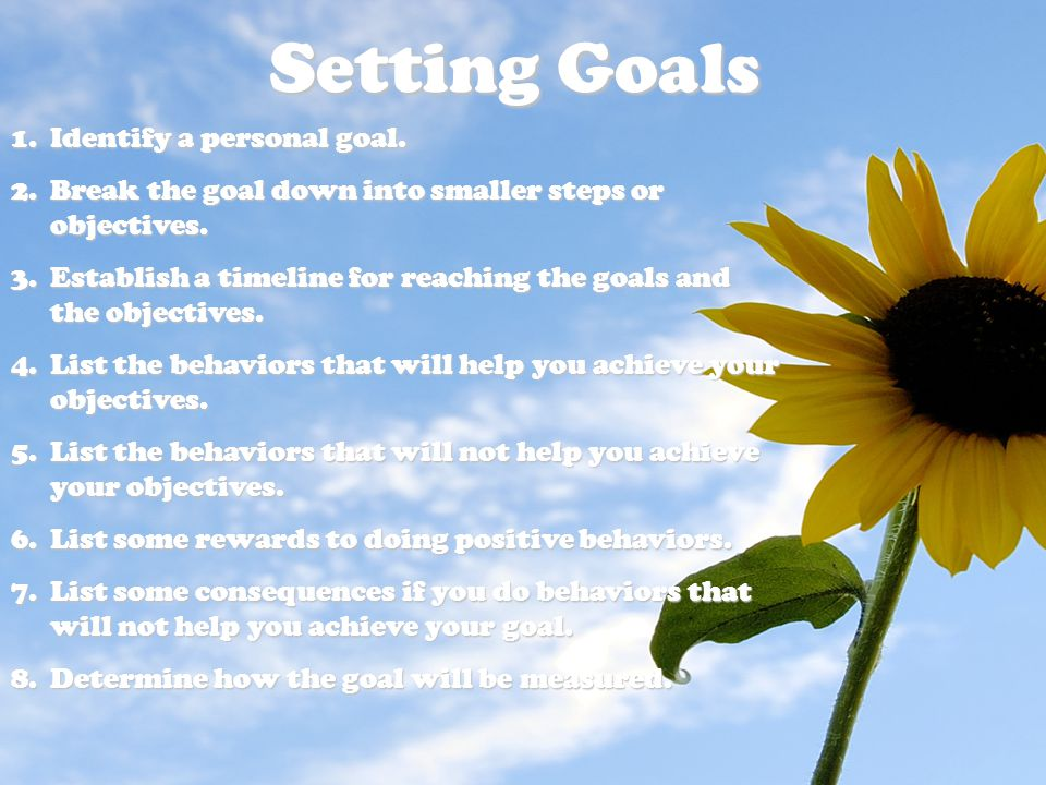 Setting Goals 1.Identify a personal goal.2.Break the goal down into smaller steps or objectives.