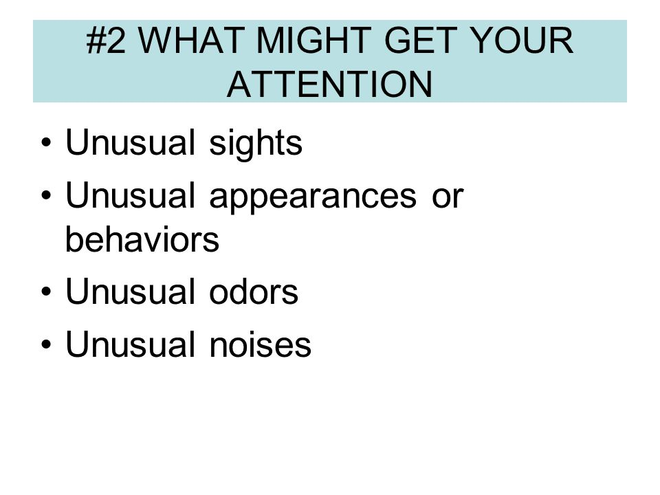 #2 WHAT MIGHT GET YOUR ATTENTION Unusual sights Unusual appearances or behaviors Unusual odors Unusual noises