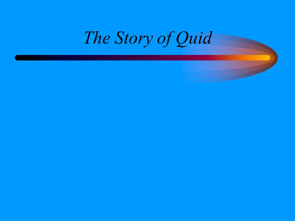 The Story of Quid