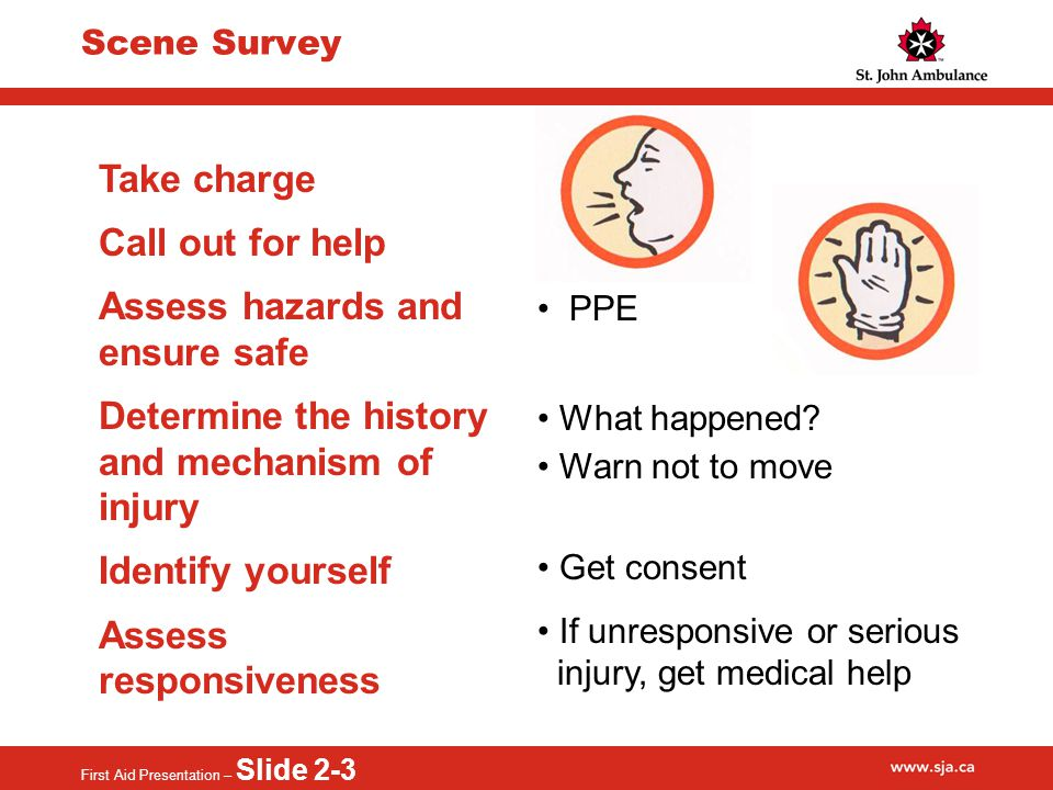 First Aid Presentation – Slide 2-3 Scene Survey Take charge Call out for help Assess hazards and ensure safe Determine the history and mechanism of injury Identify yourself Assess responsiveness PPE What happened.