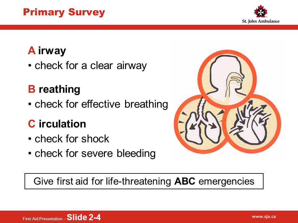 First Aid Presentation – Slide 2-4 Primary Survey A irway check for a clear airway B reathing check for effective breathing C irculation check for shock check for severe bleeding Give first aid for life-threatening ABC emergencies