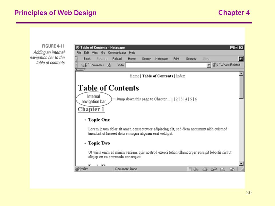 20 Principles of Web Design Chapter 4
