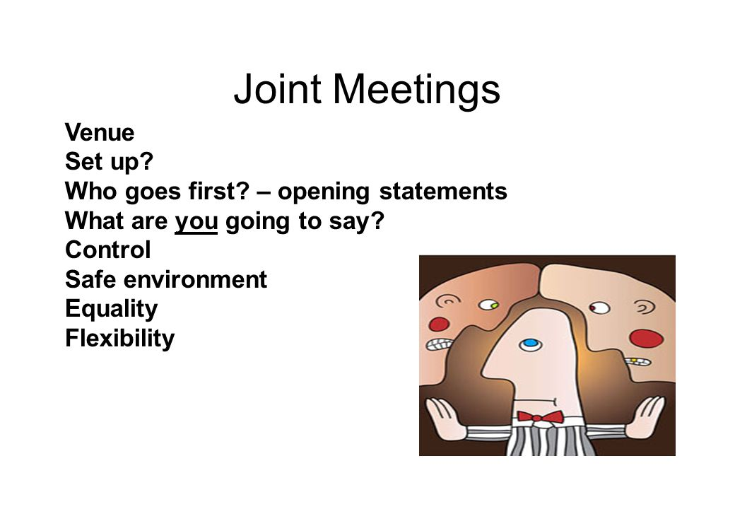 Joint Meetings Venue Set up. Who goes first. – opening statements What are you going to say.