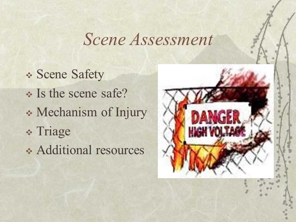 Scene Assessment  Scene Safety  Is the scene safe.