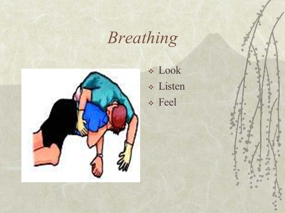Breathing  Look  Listen  Feel