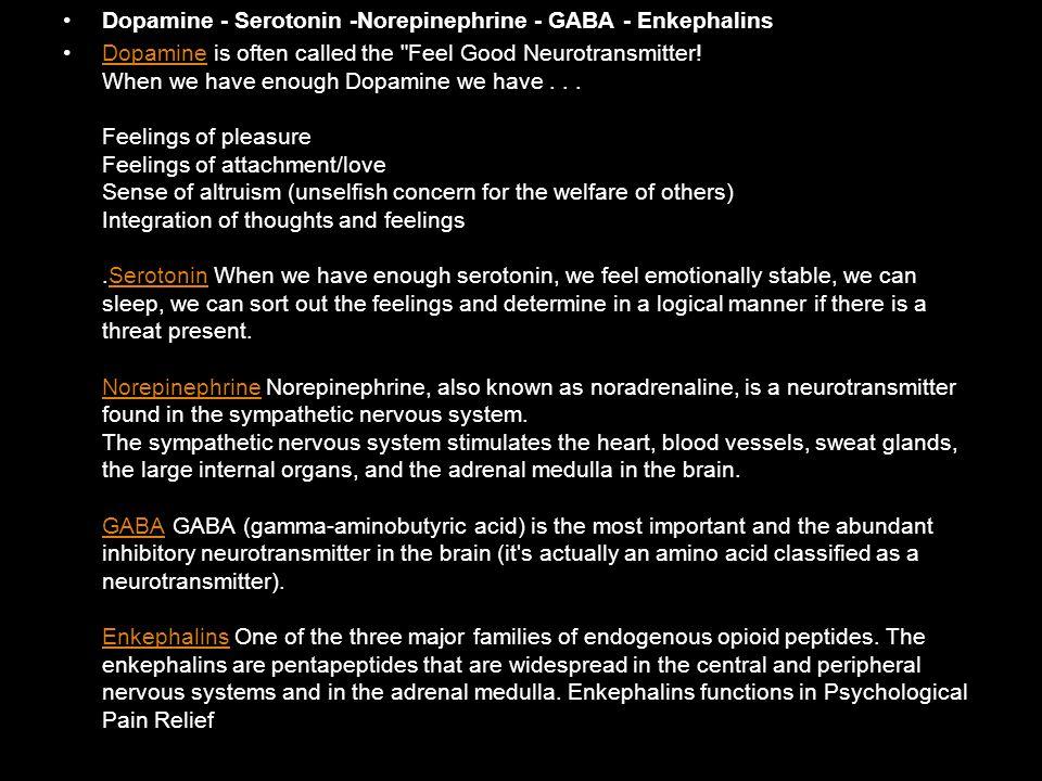 Dopamine - Serotonin -Norepinephrine - GABA - Enkephalins Dopamine is often called the Feel Good Neurotransmitter.