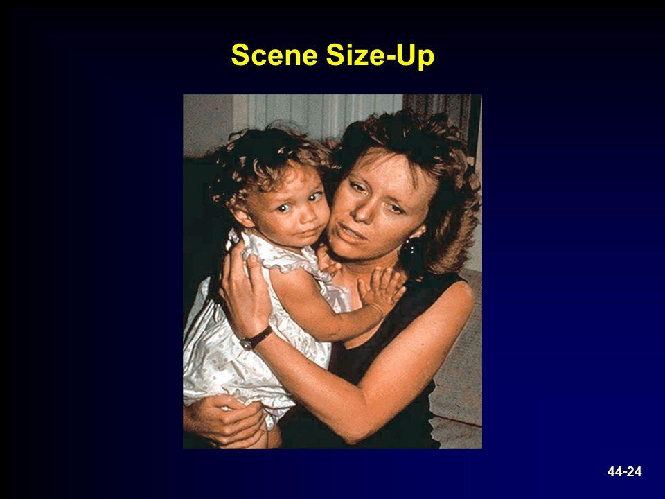 Scene Size-Up 44-24
