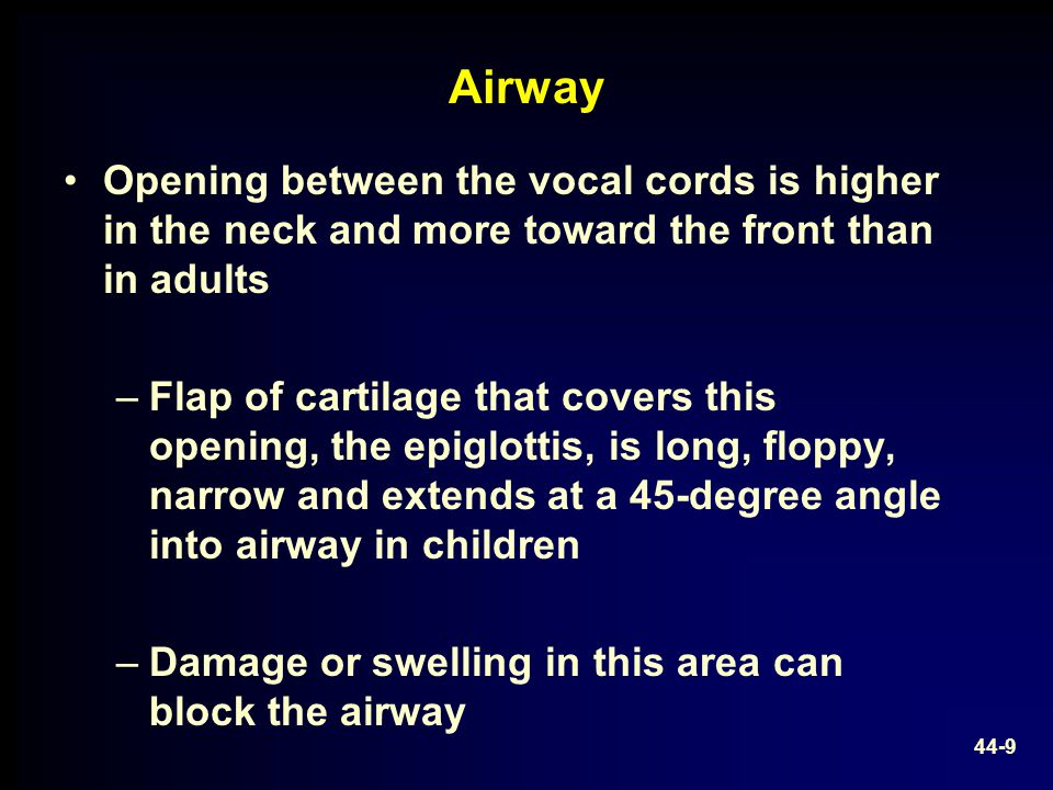 Airway Opening between the vocal cords is higher in the neck and more toward the front than in adults –Flap of cartilage that covers this opening, the