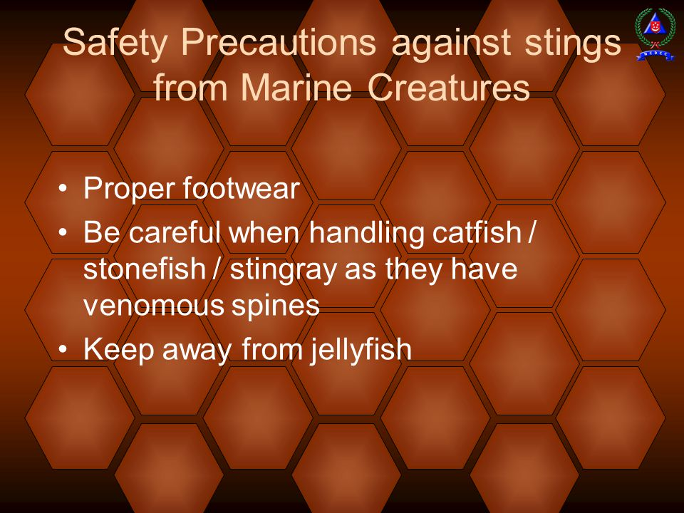 Safety Precautions against stings from Marine Creatures Proper footwear Be careful when handling catfish / stonefish / stingray as they have venomous spines Keep away from jellyfish