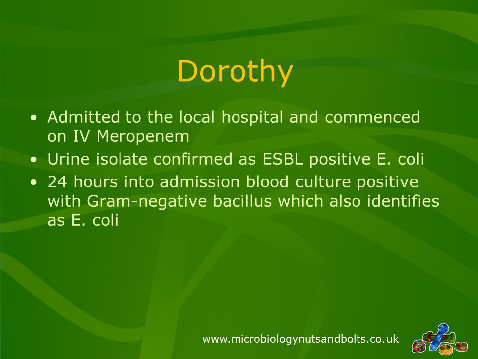 www.microbiologynutsandbolts.co.uk Dorothy Admitted to the local hospital and commenced on IV Meropenem Urine isolate confirmed as ESBL positive E.