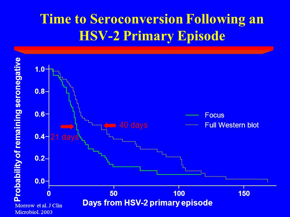 Time to Seroconversion Following an HSV-2 Primary Episode 40 days 21 days Days from HSV-2 primary episode Probability of remaining seronegative Full Western blot Focus 150100500 0.0 0.2 0.4 0.6 0.8 1.0 Morrow et al.