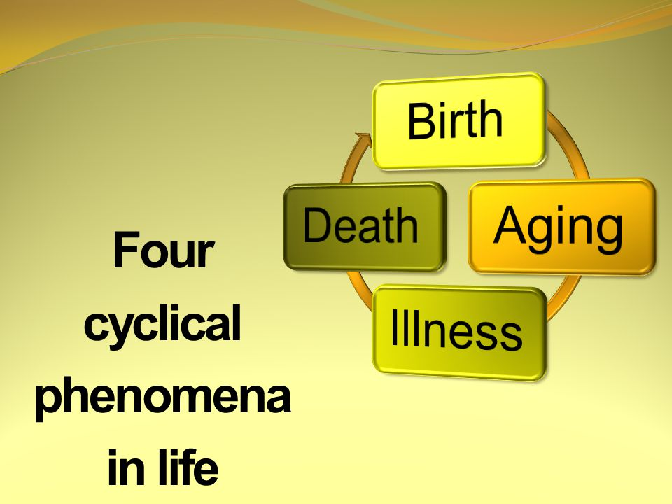 Four cyclical phenomena in life