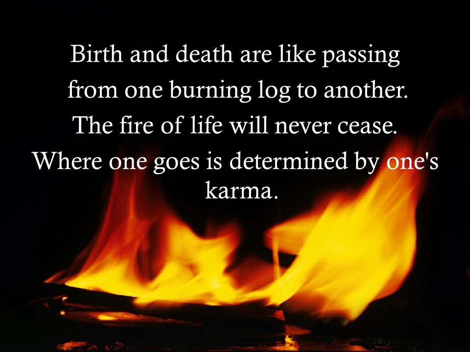 Birth and death are like passing from one burning log to another.