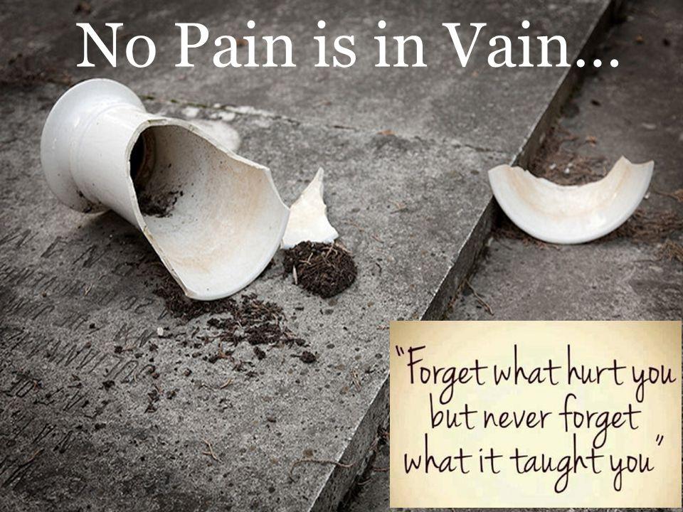 No Pain is in Vain…