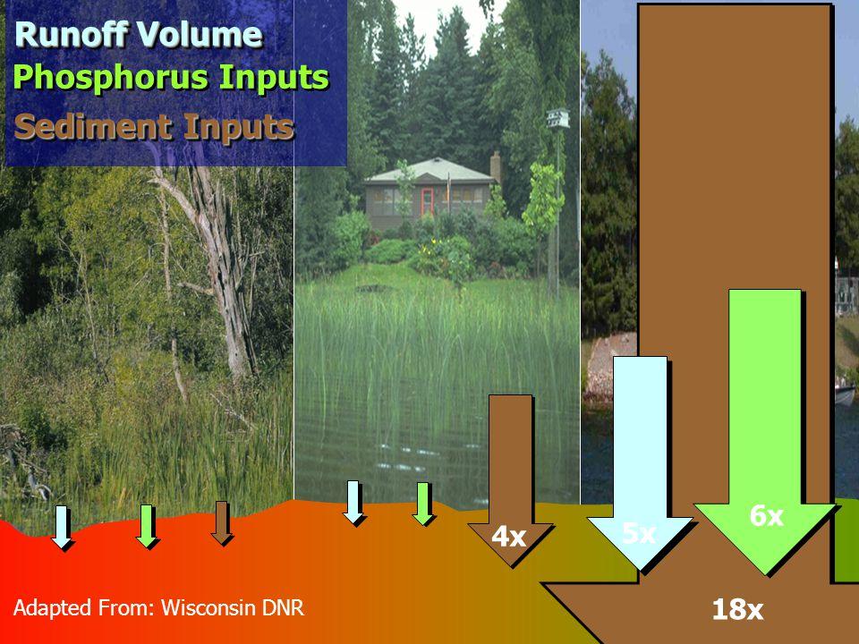 Adapted From: Wisconsin DNR 4x 18x 5x 6x Phosphorus Inputs Runoff Volume Sediment Inputs