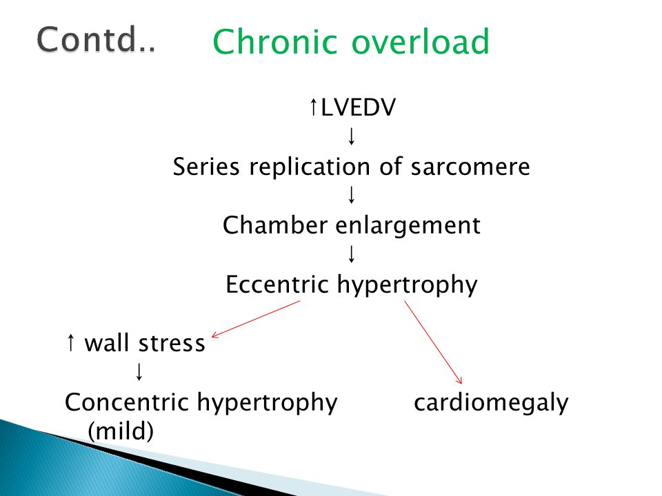 Chronic overload ↑LVEDV ↓ Series replication of sarcomere ↓ Chamber enlargement ↓ Eccentric hypertrophy ↑ wall stress ↓ Concentric hypertrophy cardiomegaly (mild)