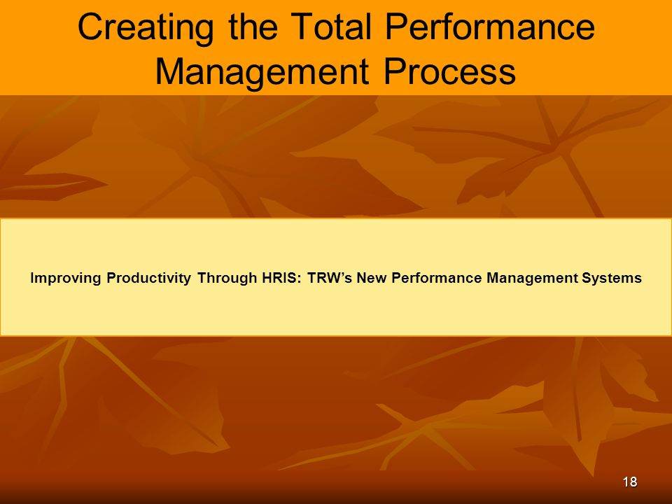 18 Creating the Total Performance Management Process Improving Productivity Through HRIS: TRW's New Performance Management Systems