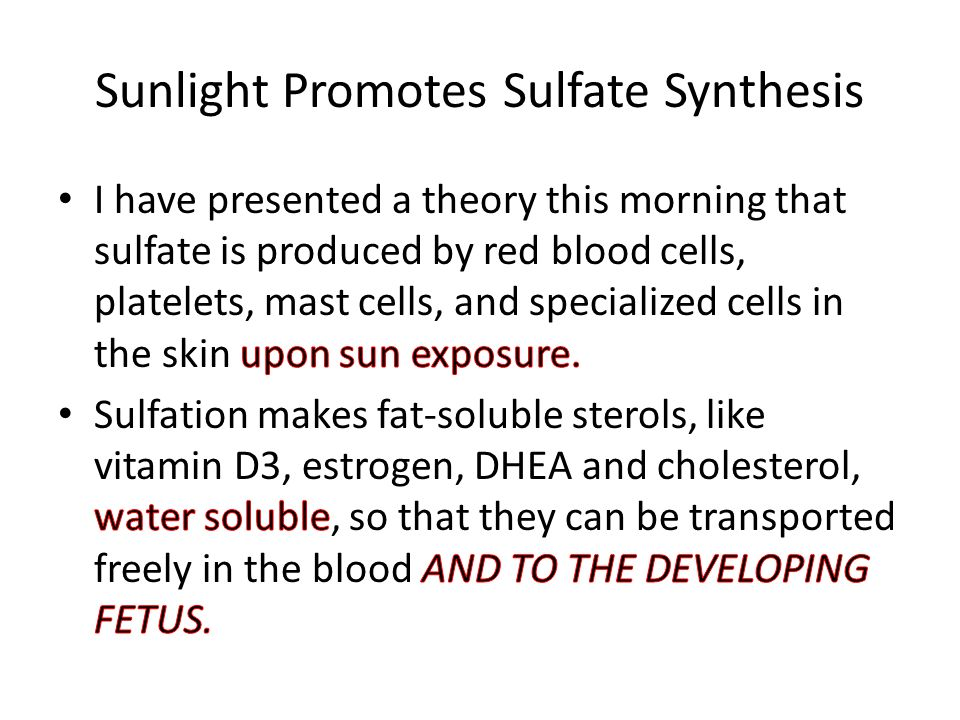 Sunlight Promotes Sulfate Synthesis