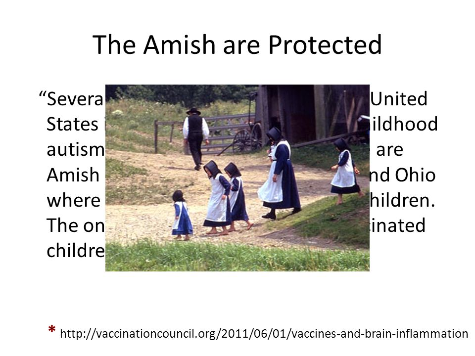 The Amish are Protected