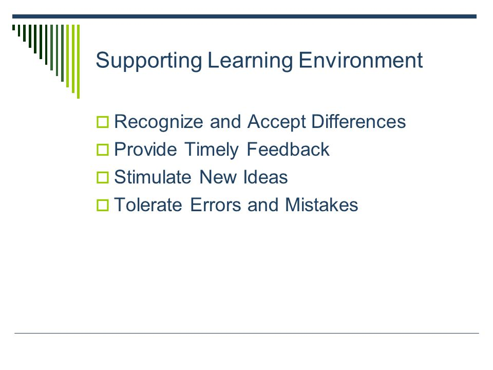 Supporting Learning Environment  Recognize and Accept Differences  Provide Timely Feedback  Stimulate New Ideas  Tolerate Errors and Mistakes