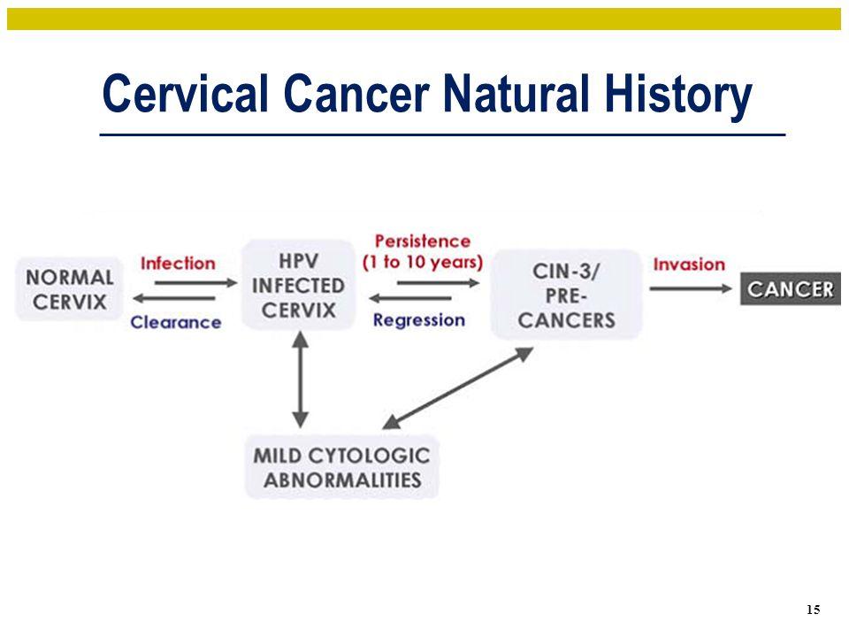 Cervical Cancer Natural History 15