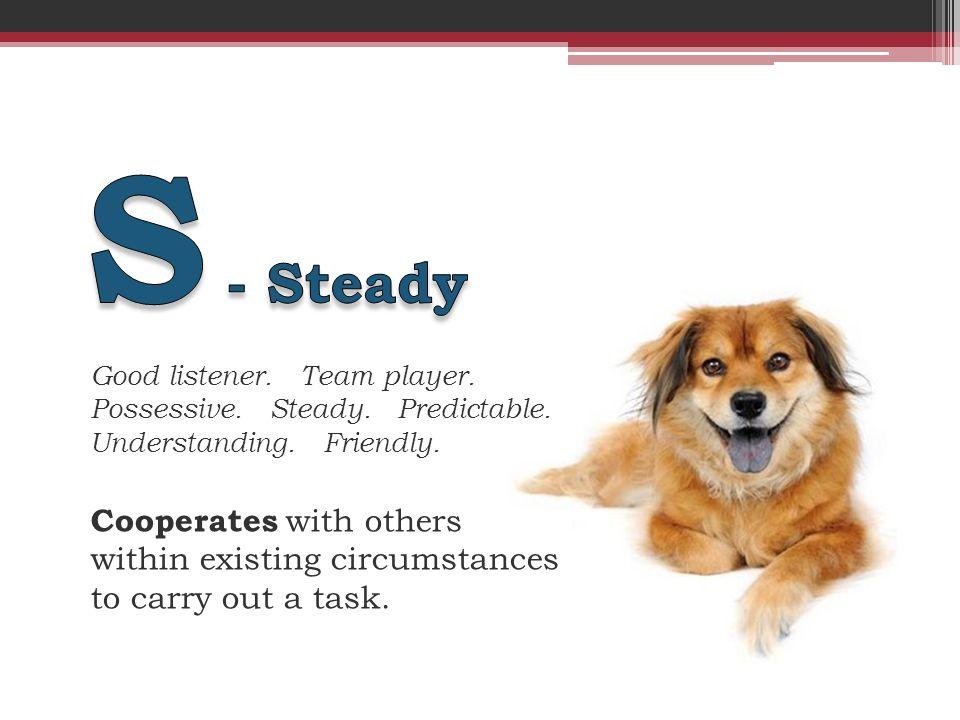 Good listener. Team player. Possessive. Steady.