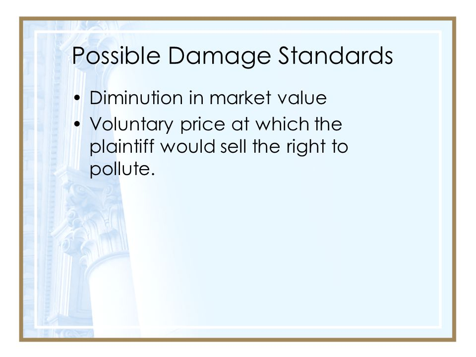 Possible Damage Standards Diminution in market value Voluntary price at which the plaintiff would sell the right to pollute.