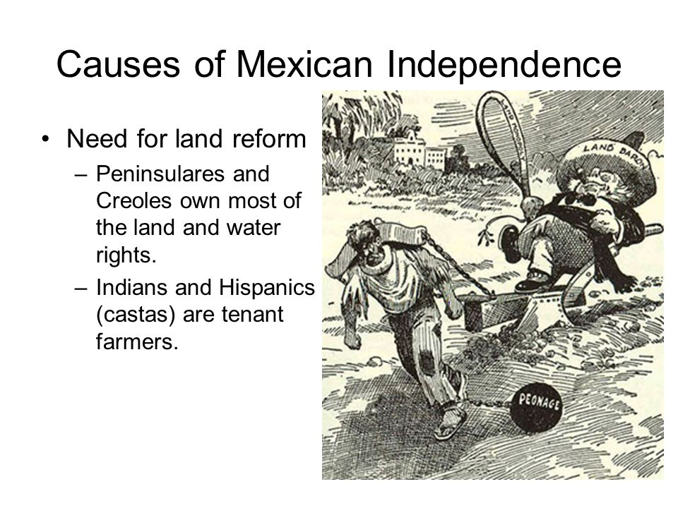 Causes of Mexican Independence Need for land reform –Peninsulares and Creoles own most of the land and water rights.