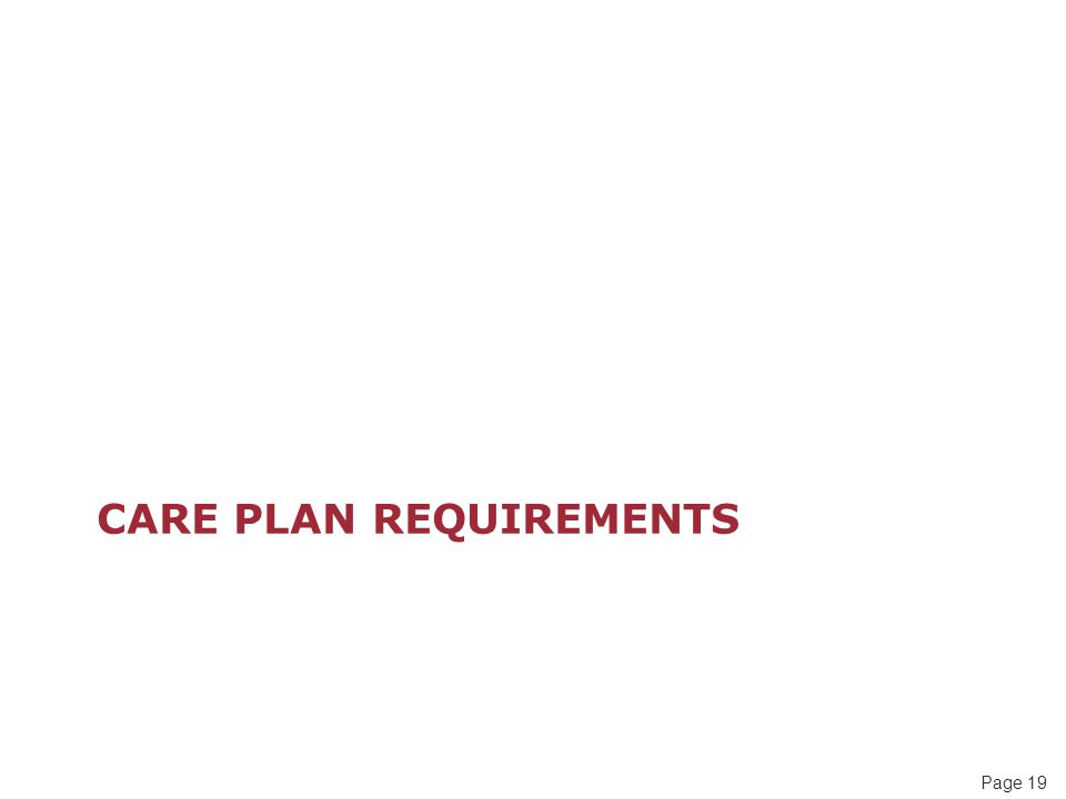 Page 19 CARE PLAN REQUIREMENTS
