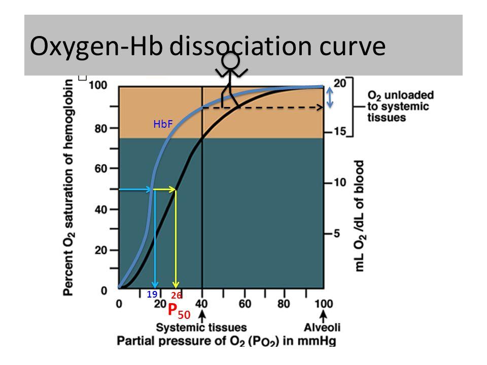 26 HbF 19 Oxygen-Hb dissociation curve P 50