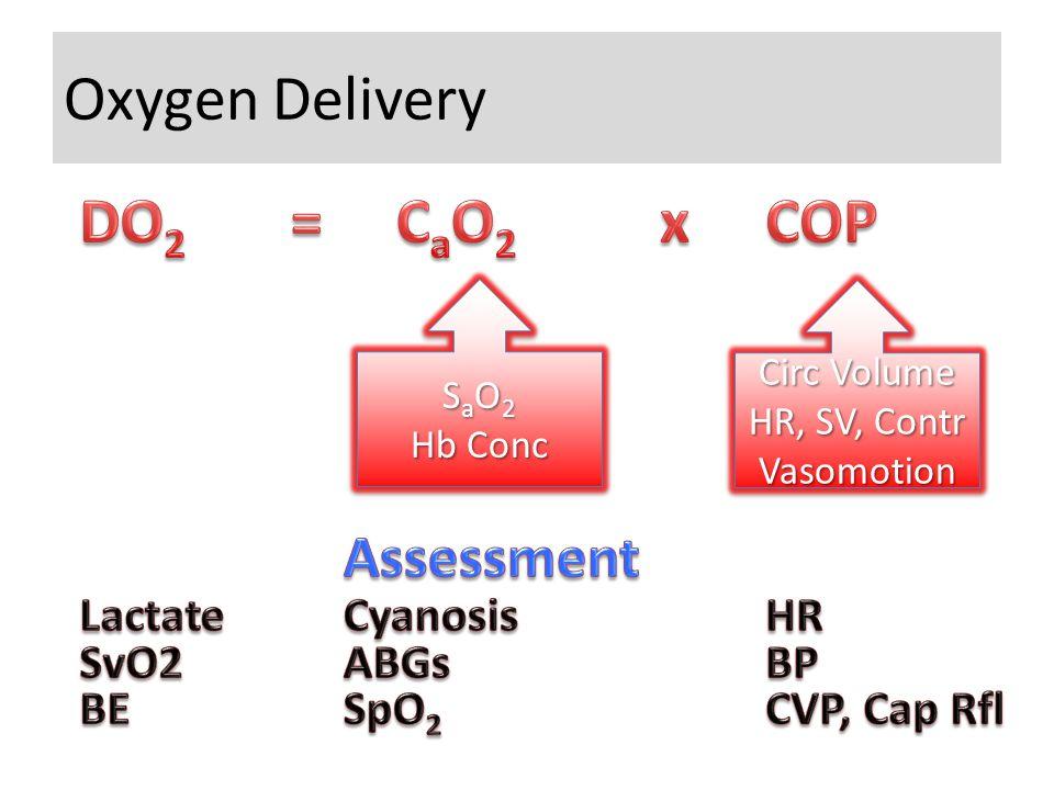 Oxygen Delivery S a O 2 Hb Conc S a O 2 Hb Conc Circ Volume HR, SV, Contr Vasomotion Circ Volume HR, SV, Contr Vasomotion