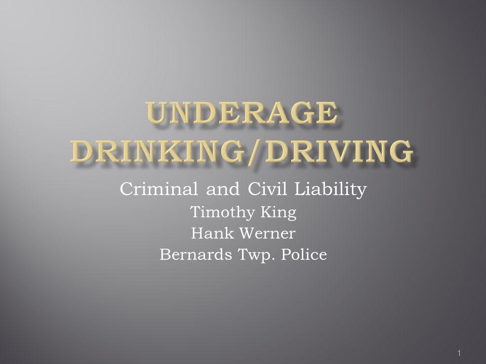 Criminal and Civil Liability Timothy King Hank Werner Bernards Twp. Police 1