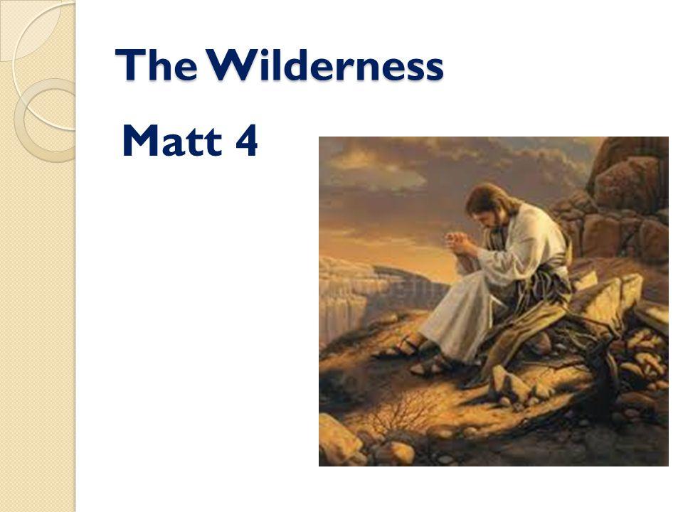 The Wilderness Matt 4
