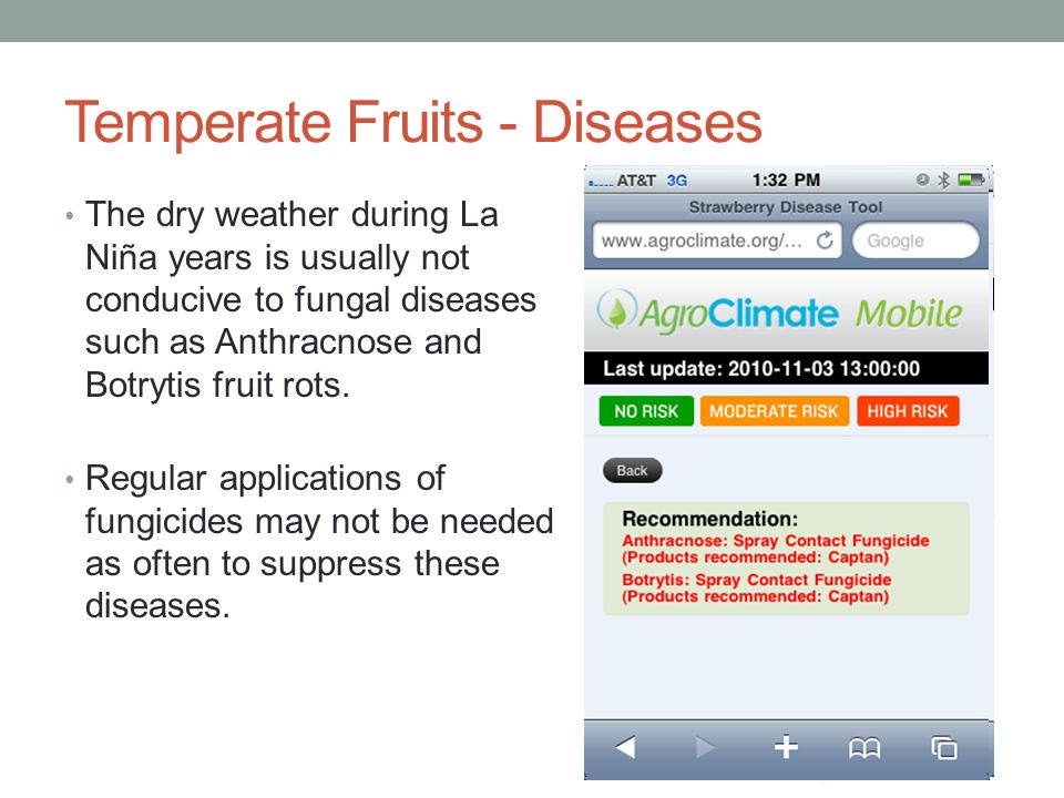 Temperate Fruits - Diseases The dry weather during La Niña years is usually not conducive to fungal diseases such as Anthracnose and Botrytis fruit rots.