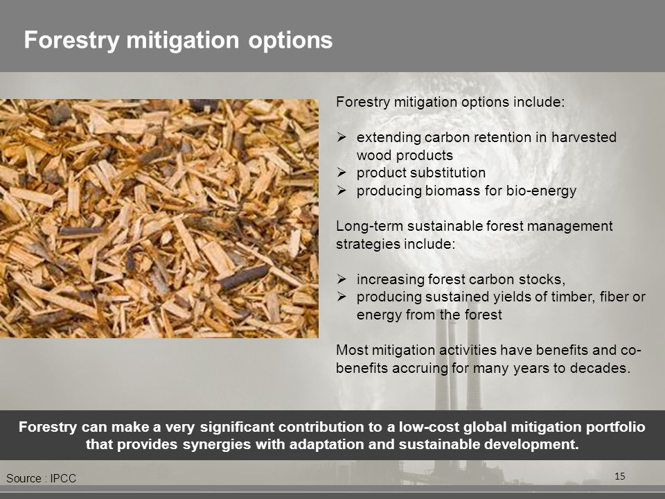 Forestry mitigation options 15 Forestry mitigation options include:  extending carbon retention in harvested wood products  product substitution  producing biomass for bio-energy Long-term sustainable forest management strategies include:  increasing forest carbon stocks,  producing sustained yields of timber, fiber or energy from the forest Most mitigation activities have benefits and co- benefits accruing for many years to decades.