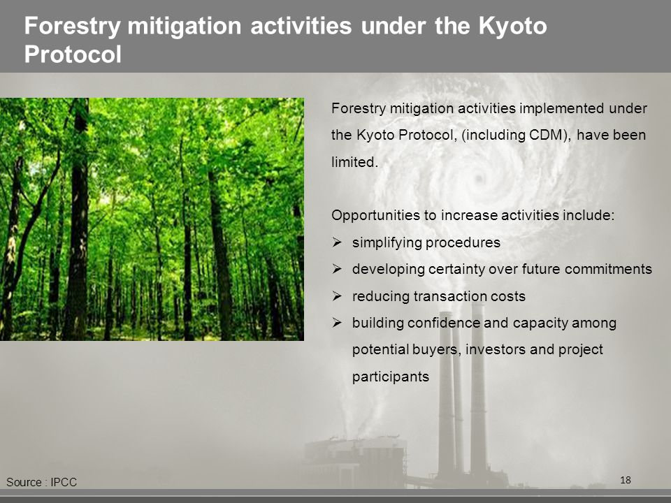 Forestry mitigation activities under the Kyoto Protocol 18 Forestry mitigation activities implemented under the Kyoto Protocol, (including CDM), have been limited.