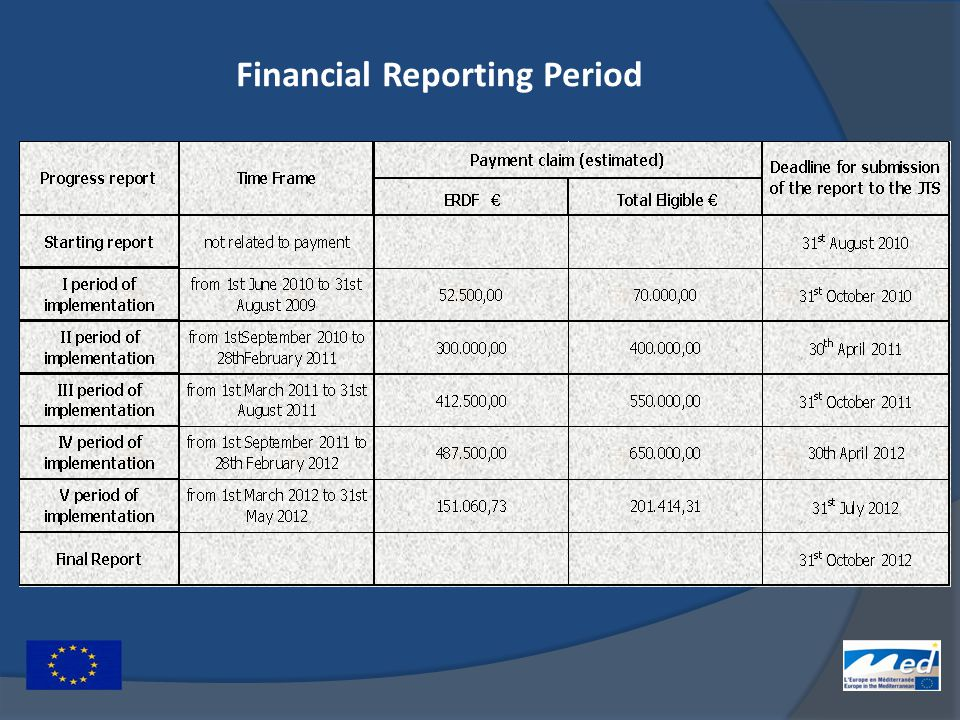 Financial Reporting Period